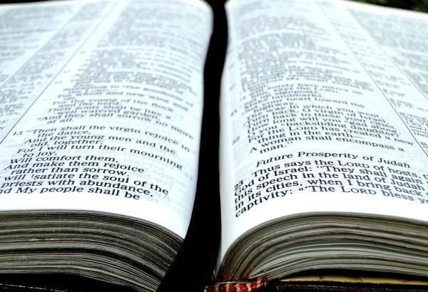 Bibeln & Predikan